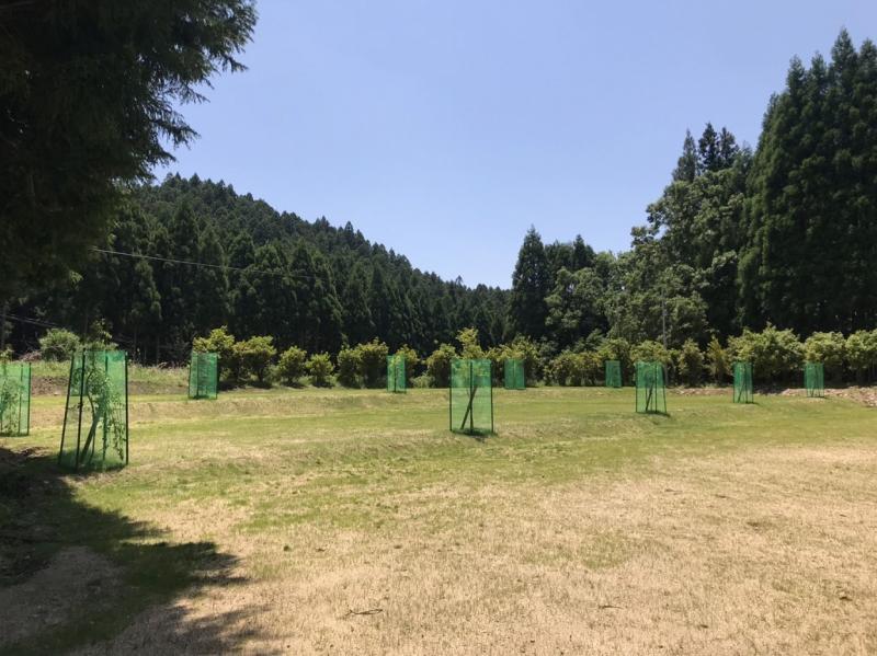 場 キャンプ 垰 tawa campと西日本1位の温泉を! 垰キャンプ場〜TAWACAMP〜